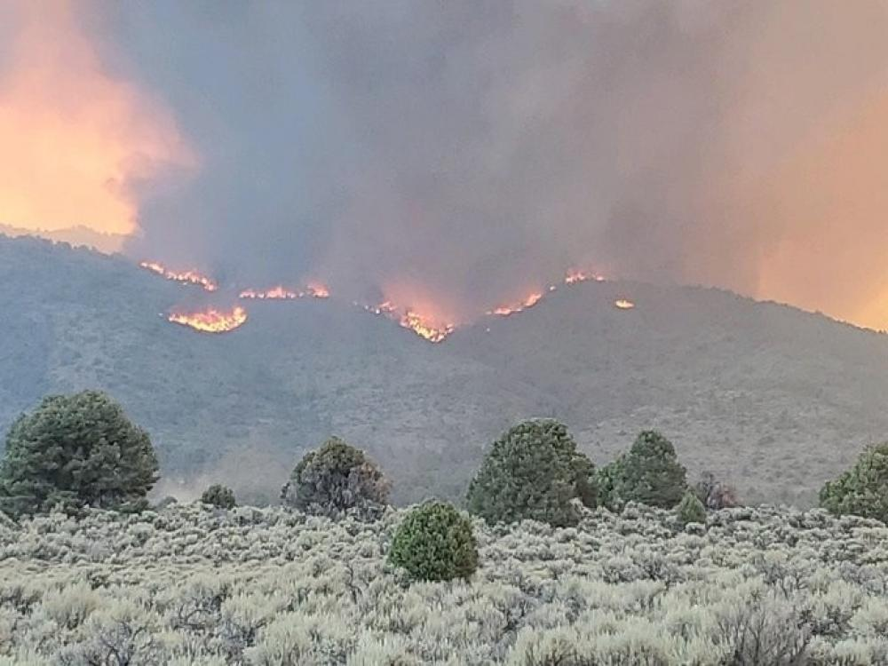 The Weekend Leader - California wildfire burns over 244,000 acres