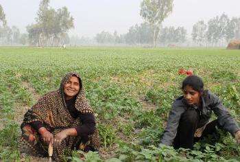 Farmers' call