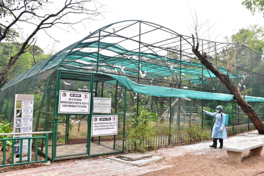 The Weekend Leader - Hyderabad zoo mourns loss of elephant (83), leopard (21)