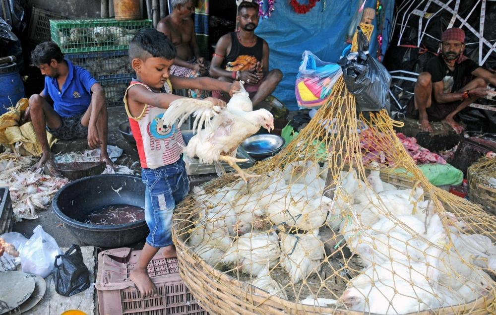 The Weekend Leader - K'taka: Poultry farmers urge govt to extend timings of chicken shops