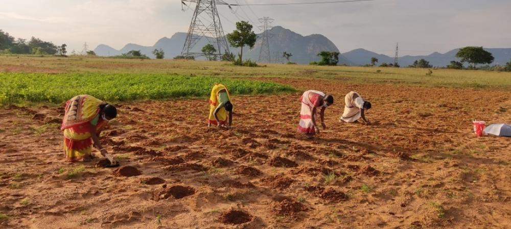 The Weekend Leader - Andhra to drill borewells for needy farmers under YSR Jala Kala