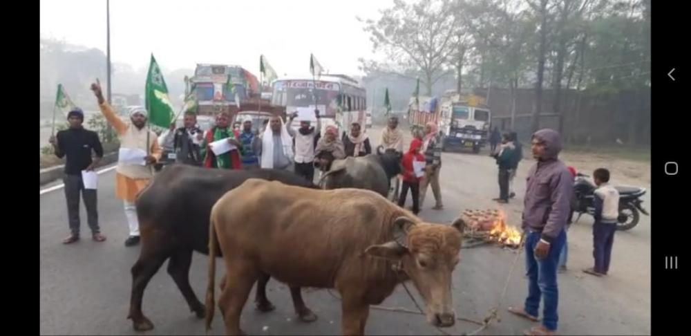 The Weekend Leader - Trade union strike hits Bihar, workers block roads with buffaloes