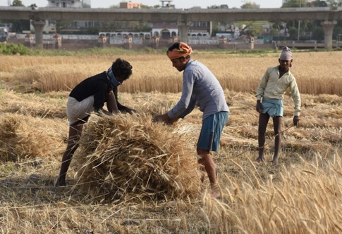 Farmers to get crops' price within 3 days: Govt