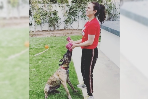 Preity Zinta uses pet pup Bruno as weight in funny workout video  ?