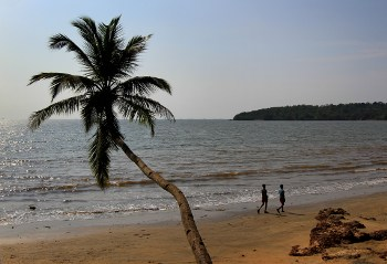 Plan needed to clean up Goa: Activists