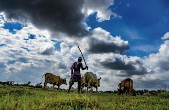 Three farm laws single major deadlock between govt and farmers