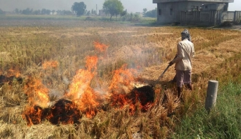 ?UP DGP asks police officials to check stubble burning