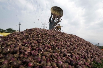 Cong MP demands removal of ban on onion exports